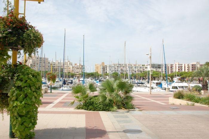 Hafen von Carnon