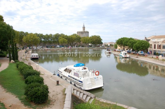 Woody in Aigues Mortes